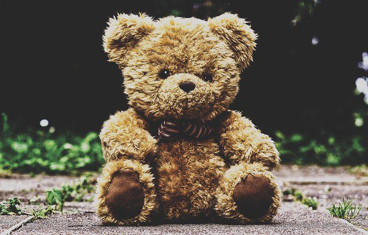 Teddy Bears | Broad Heath Primary School